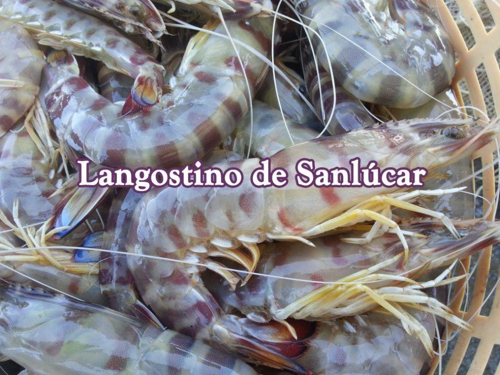 Langostino tigre de Sanlúcar de Barrameda.