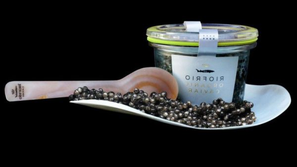 Caviar de riofrío al mejor precio.-