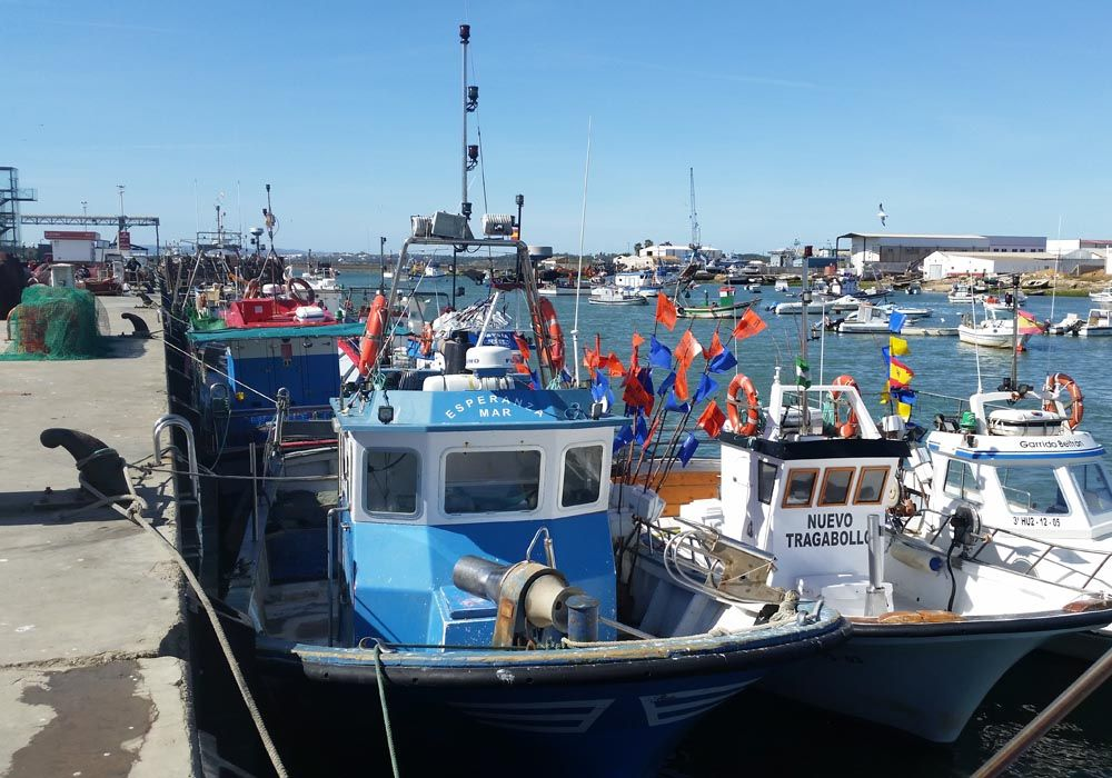 La pesca del marisco de huelva.