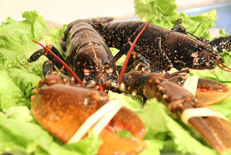 Pruea los deliciosos mariscos de La Escotilla.