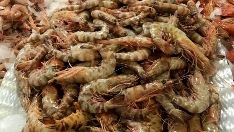Dónde comer marisco en Granada Serie de oro