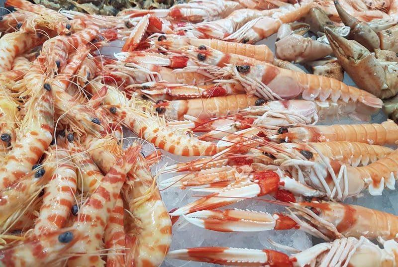 Disfruta de comer marisco frescos en Jaén