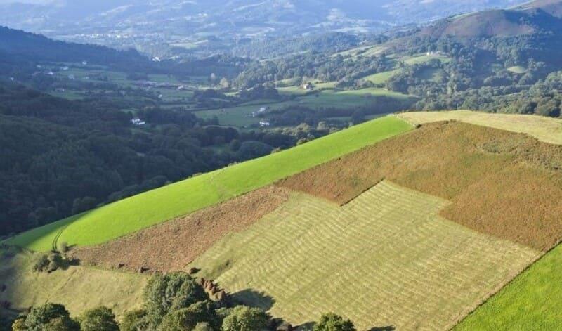 paisaje navarra