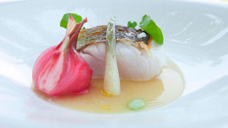 Comer marisco en restaurante nuevo molino de Cantabria.