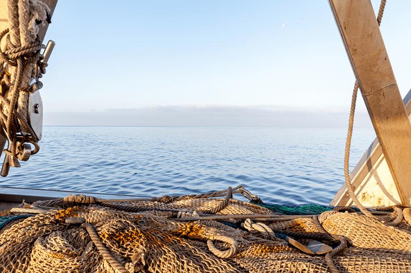 Pesca tradicional de langostino.