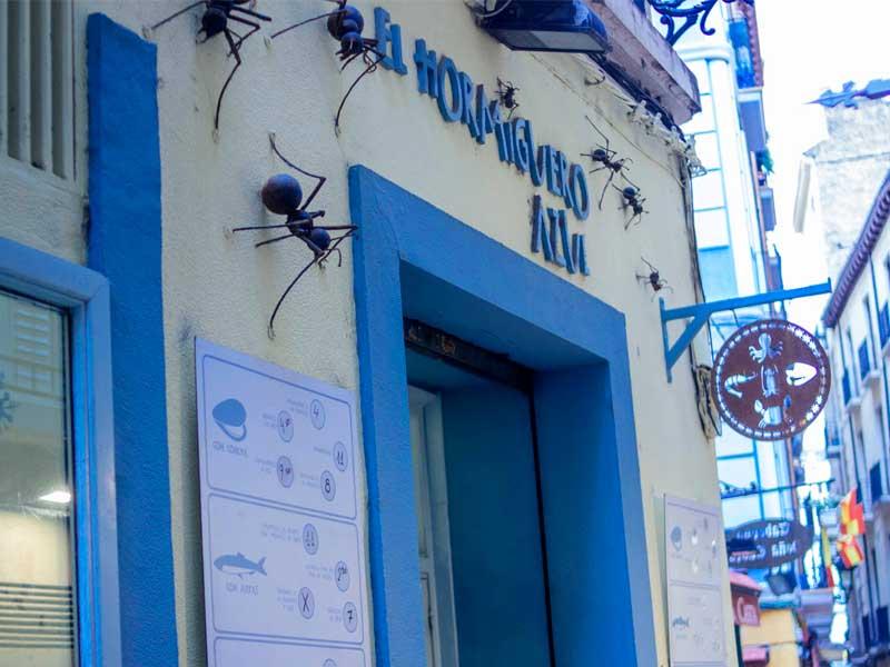 Hormiguero Azul