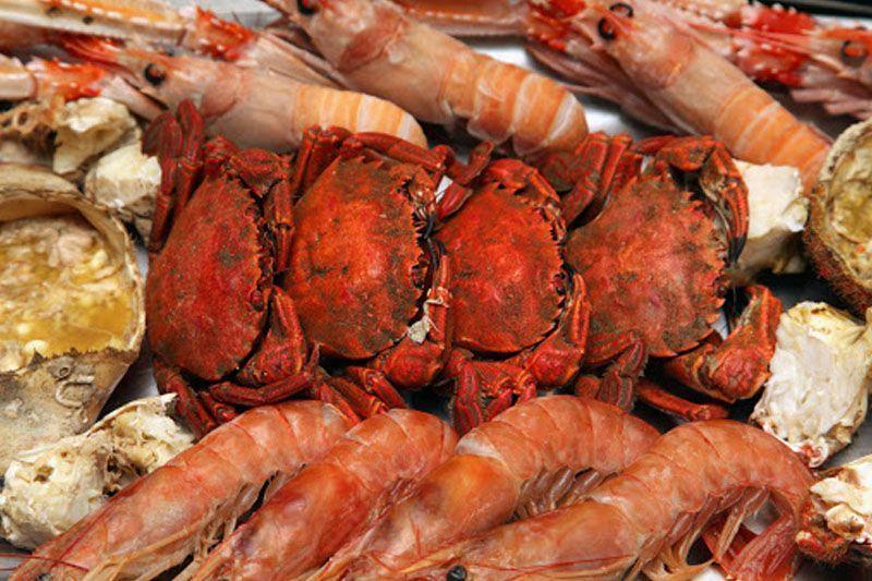 Dónde comer mariscos en Burgos