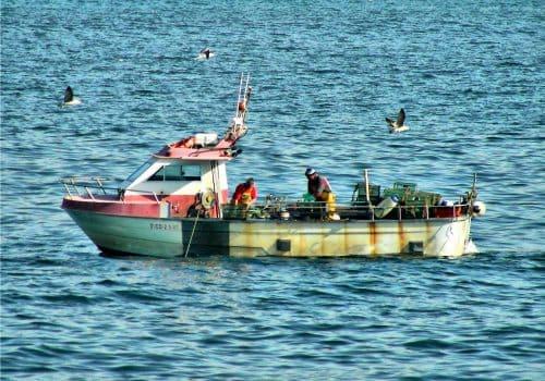 nosotros- pesca artesanal