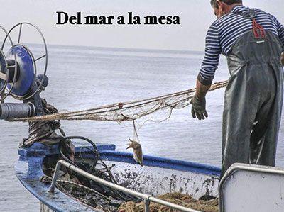 Pescador por un día en Sanlúcar