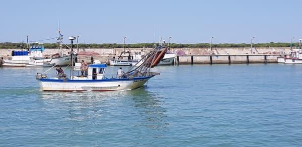 Puerto de bonanza
